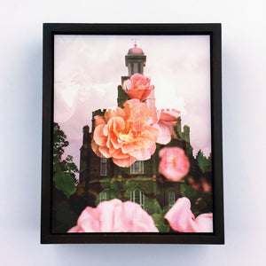 Jessica's Photography - Logan LDS Temple - Rose Bush