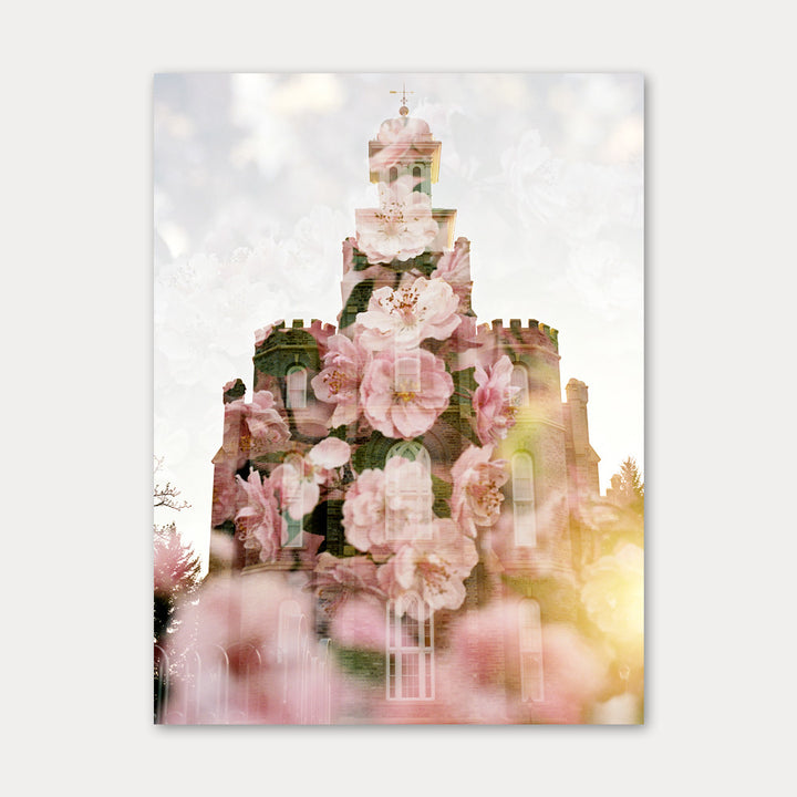 Jessica's Photography - Logan LDS Temple - Crab Apple Blossoms