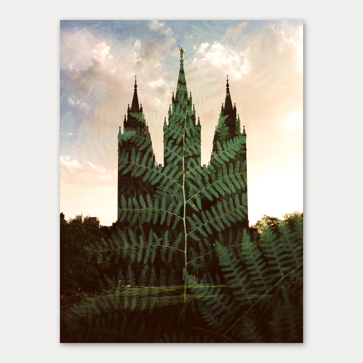 Jessica's Photography - Salt Lake LDS Temple - Ferns