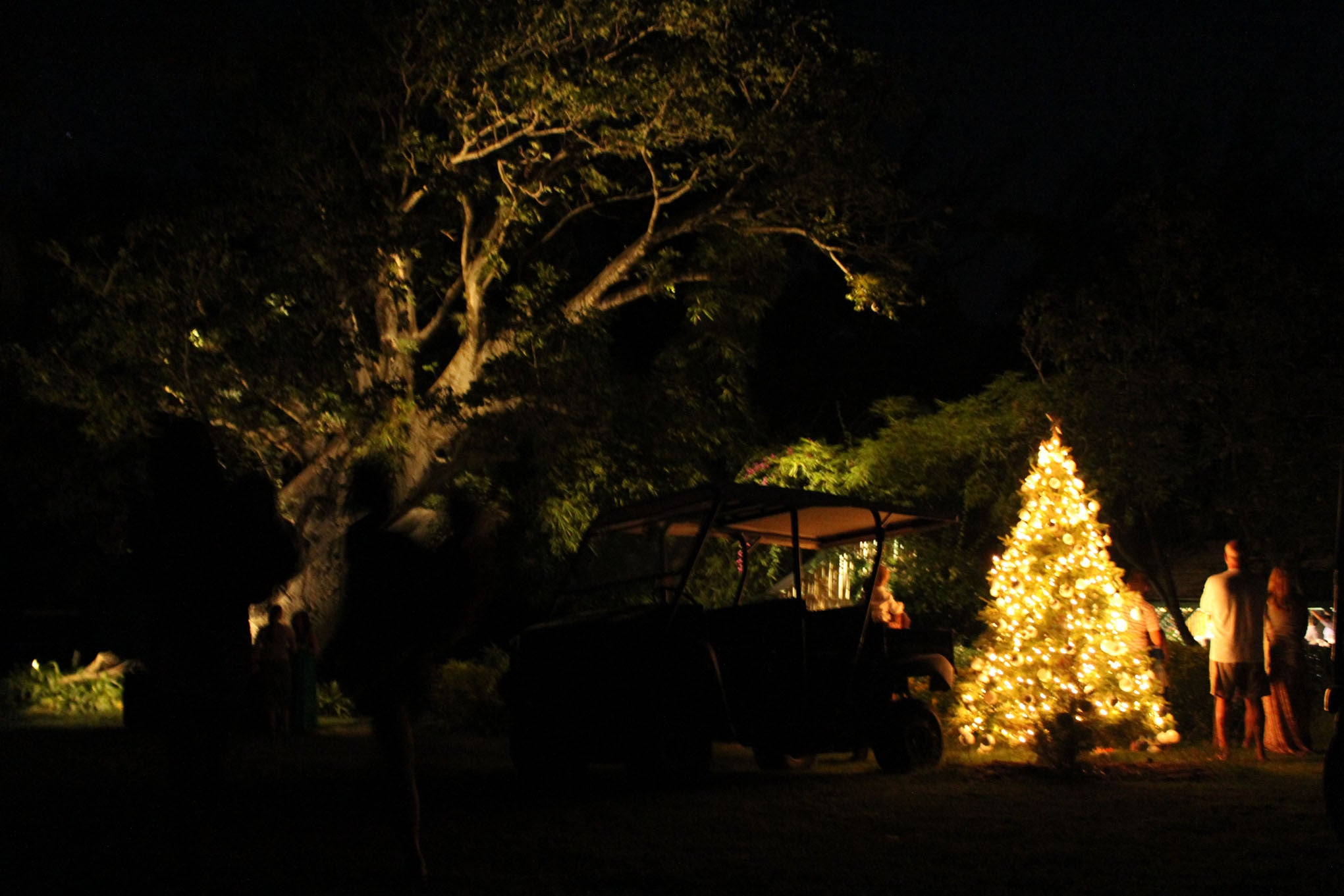 Christmas Tree at the Bamboo Church Mustique