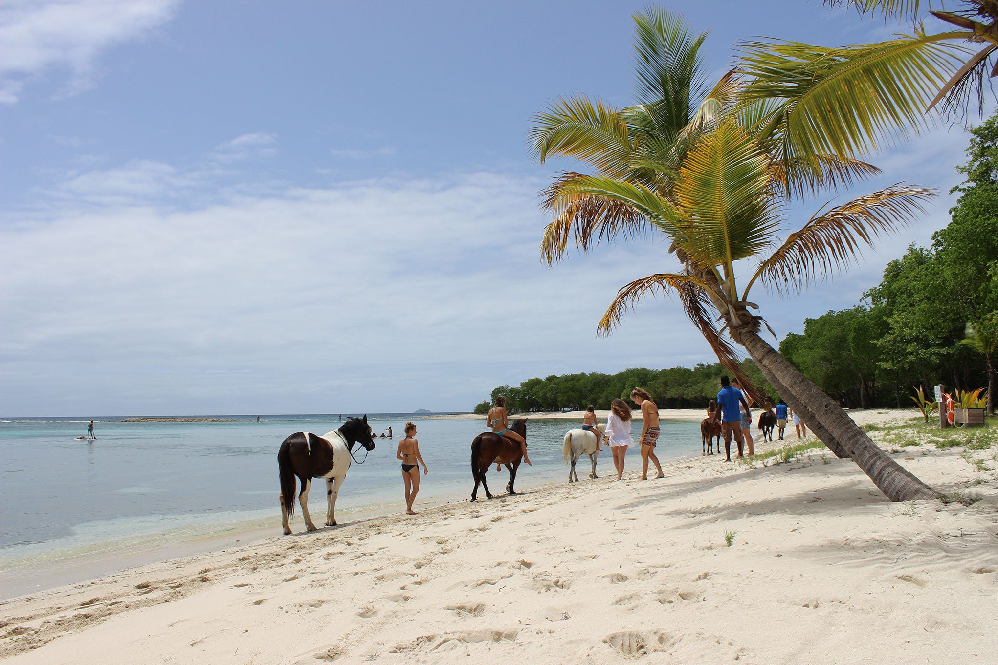 horse riding at Lagoon bay Mustique