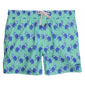 Mens Trunks ~ Monkey (Green/Purple)