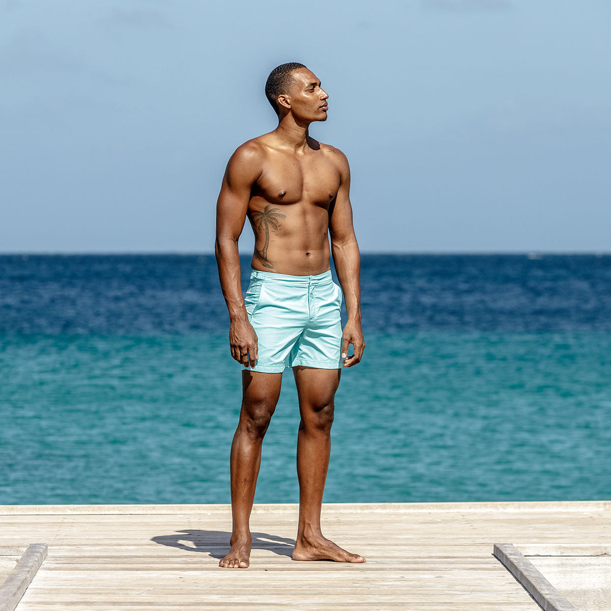 0934b15ab4 Mens Beach Shorts : MAKO TURQUOISE - Pink House Mustique