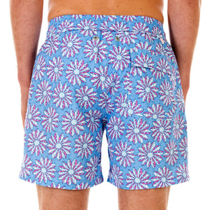 Mens swim trunks : CACTUS - BLUE/PINK back