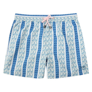 Mens swim trunks : PALM STRIPE - NAVY
