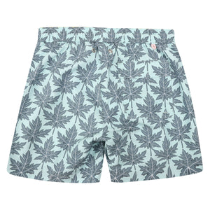 Mens swim trunks : PAPAYA - GREY PALE BLUE back
