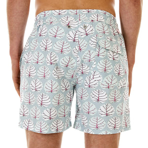 Mens Trunks (Seagrape, Blue/Pink) Back