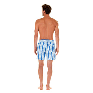Mens swim trunks : PALM STRIPE - NAVY, back