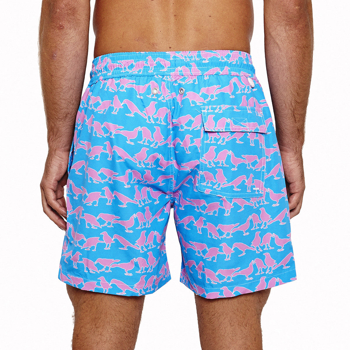 Mens Trunks (Grackle Blue/Pink) Back