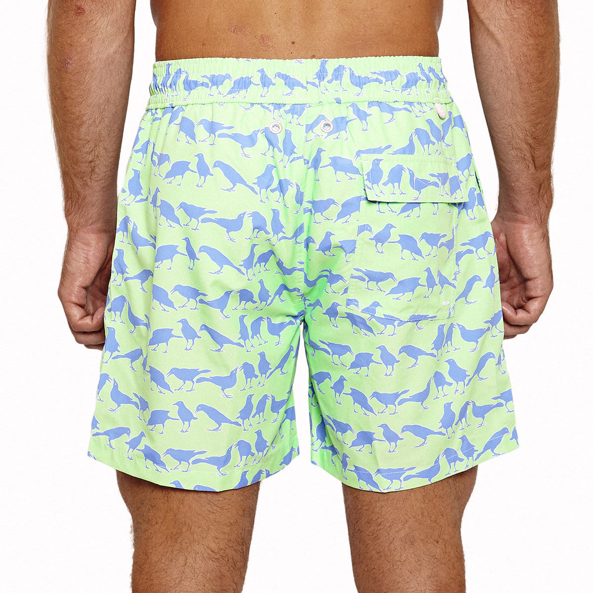 Mens Trunks (Grackle Green) Back
