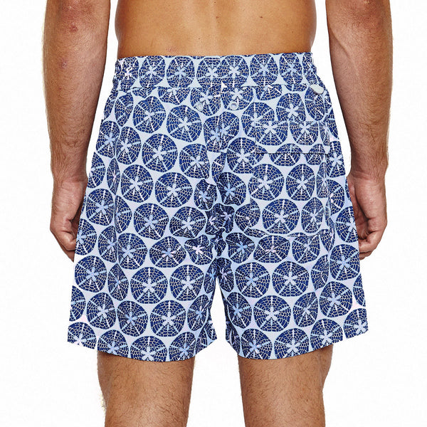 Mens Trunks (Sand Dollar Grey/Blue) Back