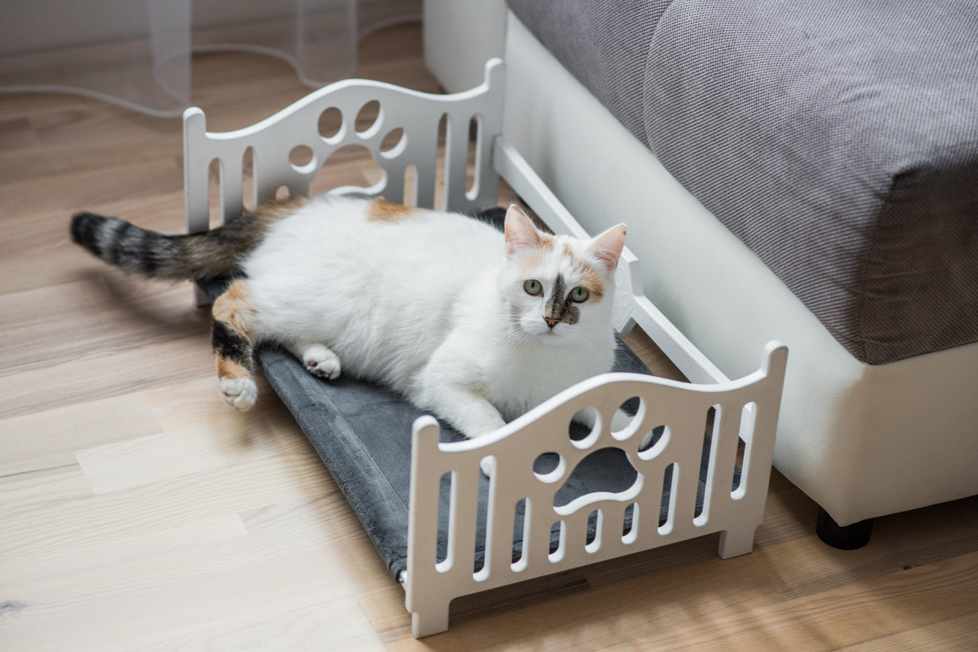Bed for cats Cat accessories Animal furniture
