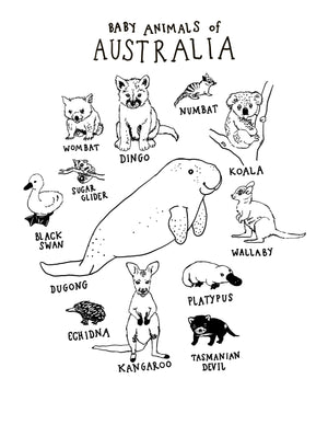 Animals of Australia + Baby Animals of Australia