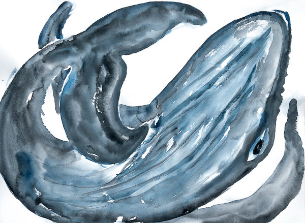 Humpback Whale Painting by Stephanie Fuller