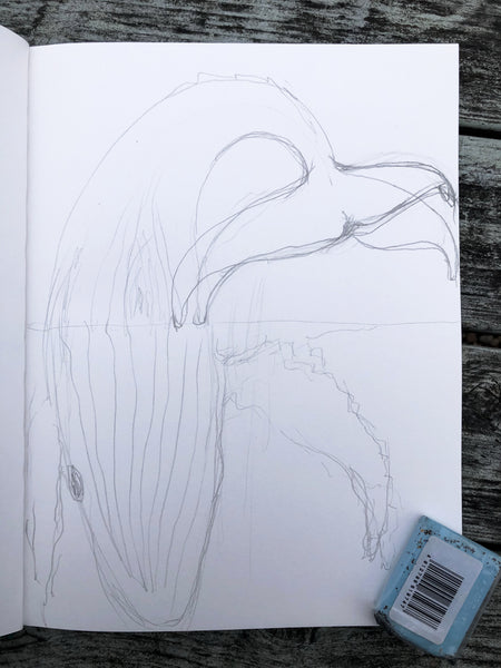 Migaloo Diving Sketch by Stephanie Burns