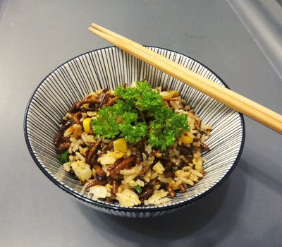 Attempt your own Mealworm Fried Rice with everyday ingredients