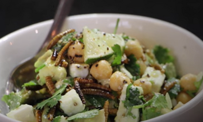 Fresh Summer Mealworm Salad