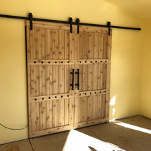Load image into Gallery viewer, Double Barn Door Package - Horizon style with Barn Hardware