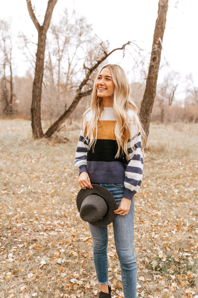Stripe Sleeve Contrast Sweater