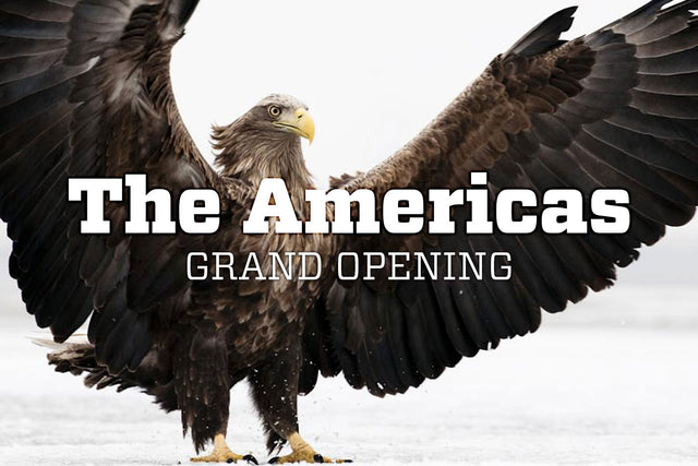 The Americas // Grand Opening //