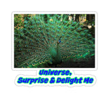 Law of Attraction Kiss-Cut Stickers - Universe Surprise & Delight Me