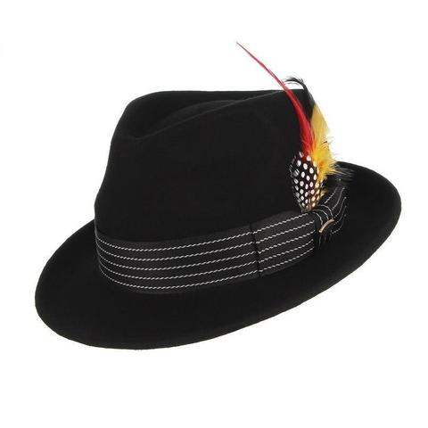 Spotted Multicolored Feather Stripe Hatband Black Hat