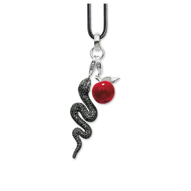 Black Crystal Snake and Red Apple Pendant with Rope Necklace
