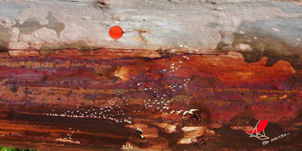Bird watching in the dry red centre. Rev C.  Australian original art print.