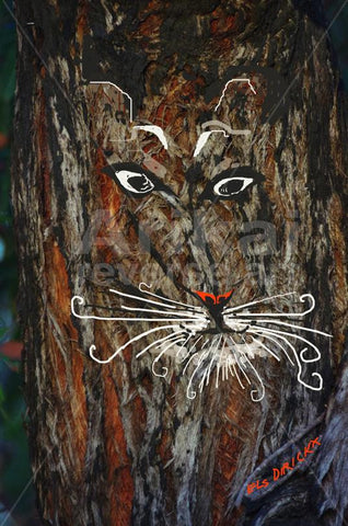 Tigger the tiger with curly whiskers. Australian original art print.