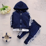2020 Spring Baby Casual Tracksuit Children Boy Girl Cotton Zipper Jacket Pants 2Pcs/Sets Kids Leisure Sport Suit Infant Clothing - YouCanGetGifts Store