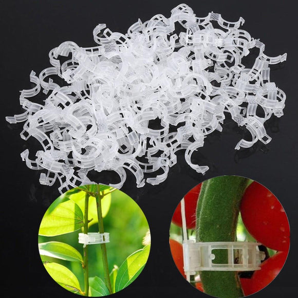 50/100pcs Plant Support Clips For Tomato Hanging Trellis Vine Connects Plants Protection Greenhouse Vegetables Garden Ornament - YouCanGetGifts Store