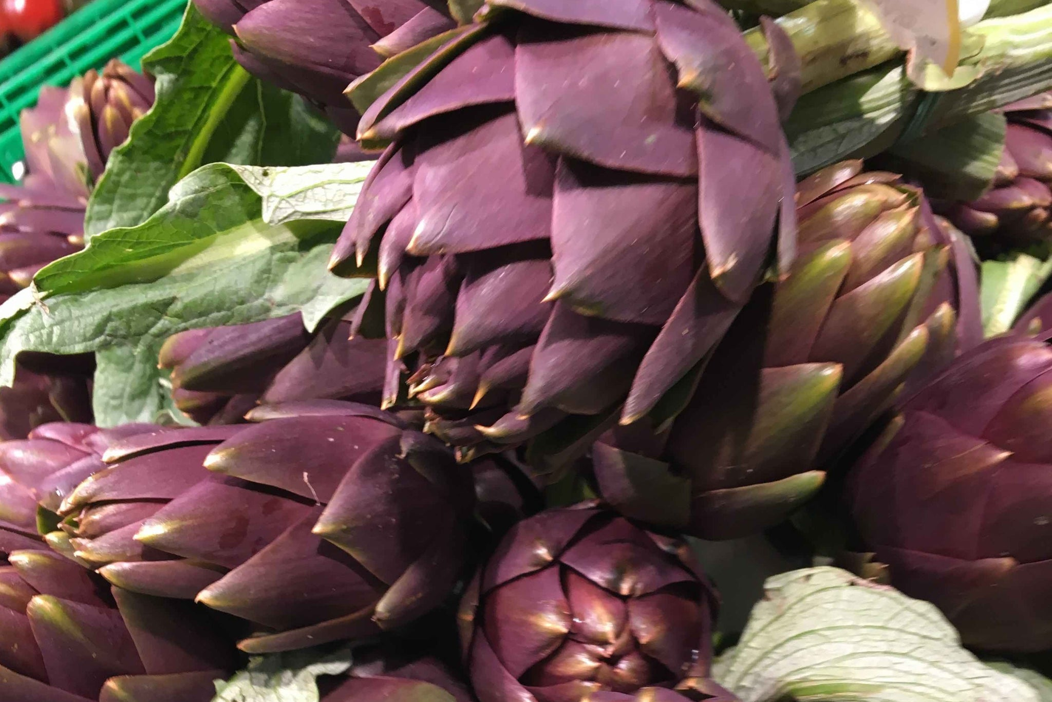Steamed Balsamic Globe Artichokes