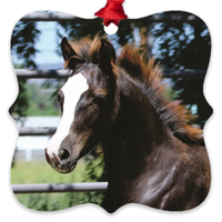 Morgan Horse Baby Metal Ornament - Not Bad Gifts