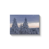 Winter Scene - Canvas Wrap - Not Bad Gifts
