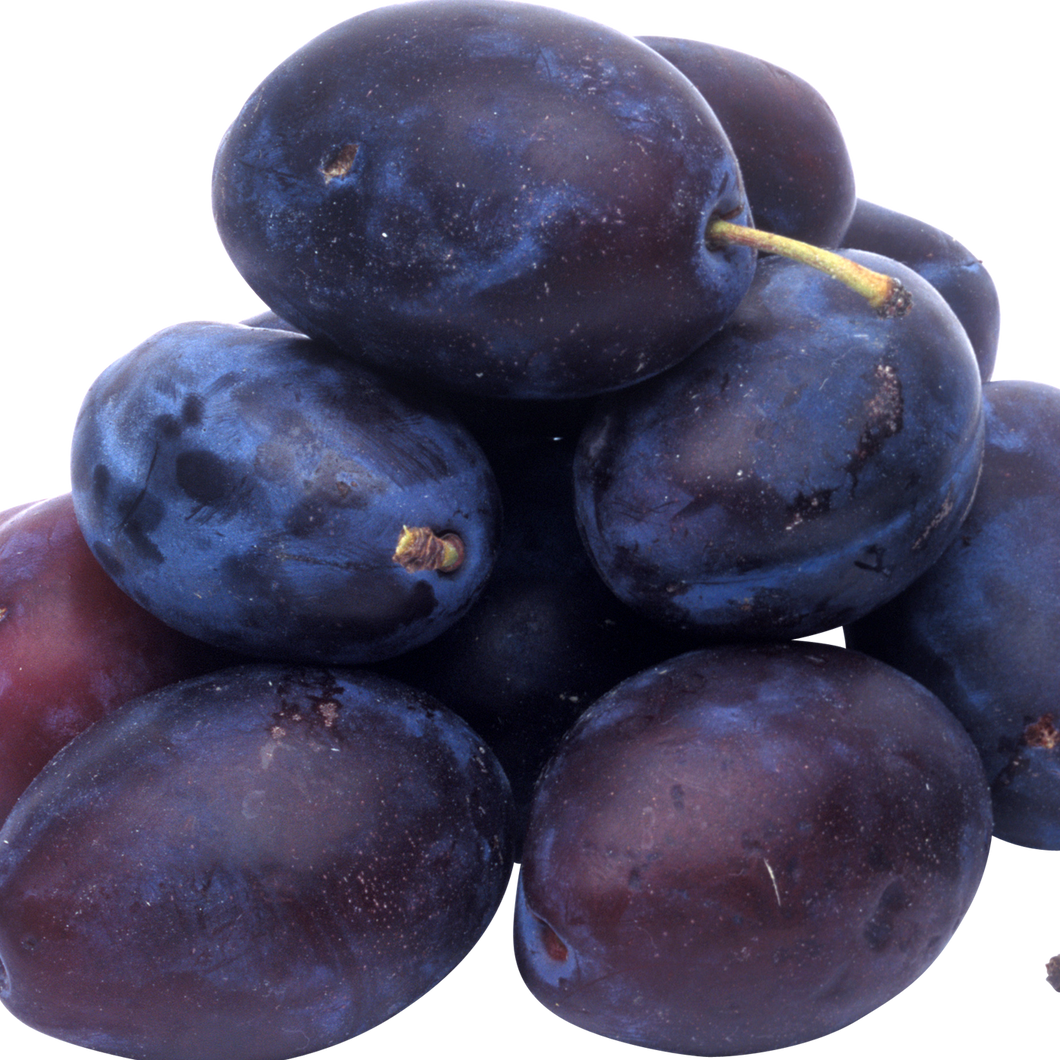 Blue Plums - Local ONT (quart)