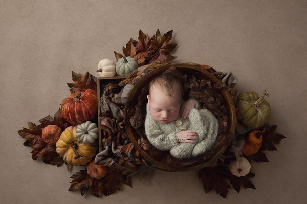 Newborn Digital Backdrops Autumn Fall