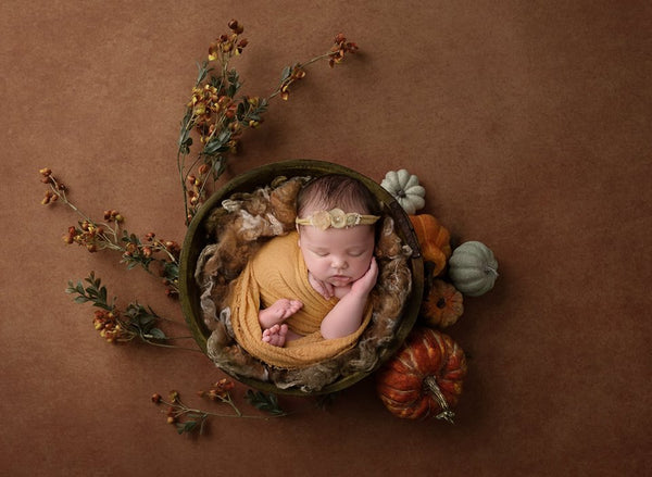 Newborn Digital Backdrops Fall Autumn