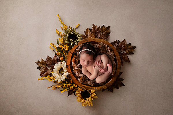 Fall digital backdrop newborn photography