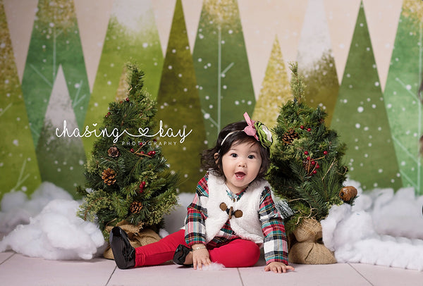 Christmas Photography Backdrop Background Winter Photo Backdrop