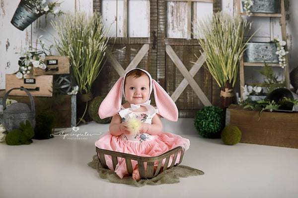 Signs of Spring Photography Backdrops and Photo Props