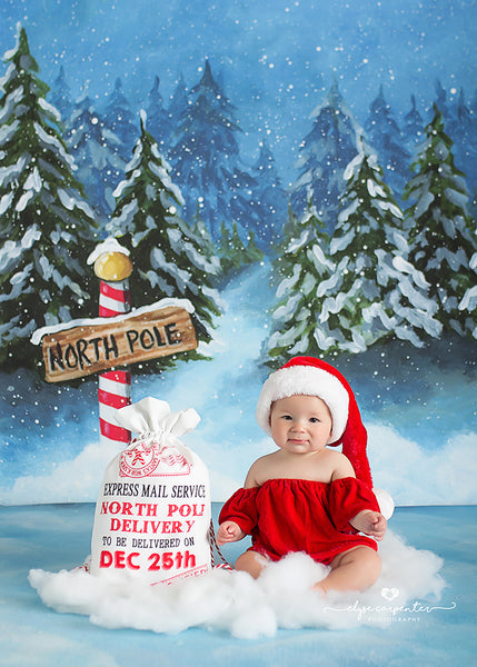 North Pole Christmas Photography Backdrop Winter Photo Props for Photographers