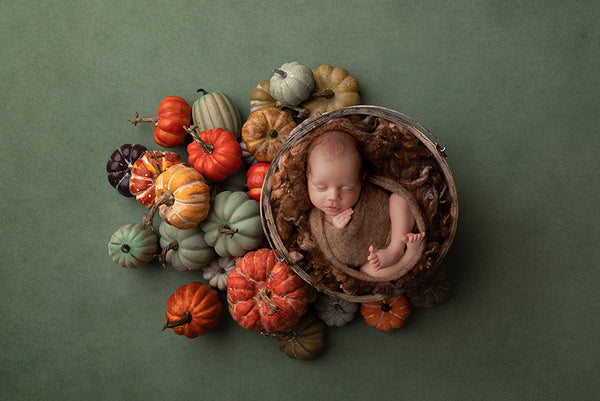 Fall digital background for baby photography