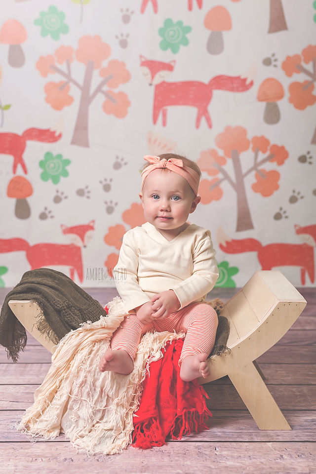 Woodland Fox photography backdrop & background