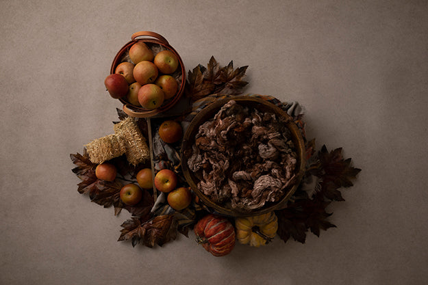 Apple Cider Season | Autumn Harvest Coll. | Digital photography backdrop & background
