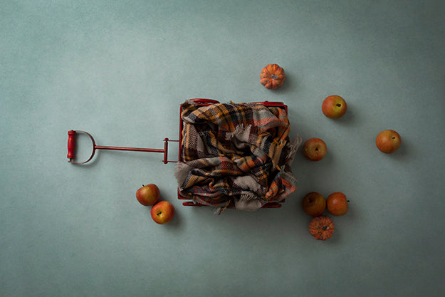 Digital Backdrop | Little Red Wagon Coll. | Apple Picking