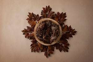 Autumn Centerpiece | Autumn Foliage Coll. | Digital photography backdrop & background