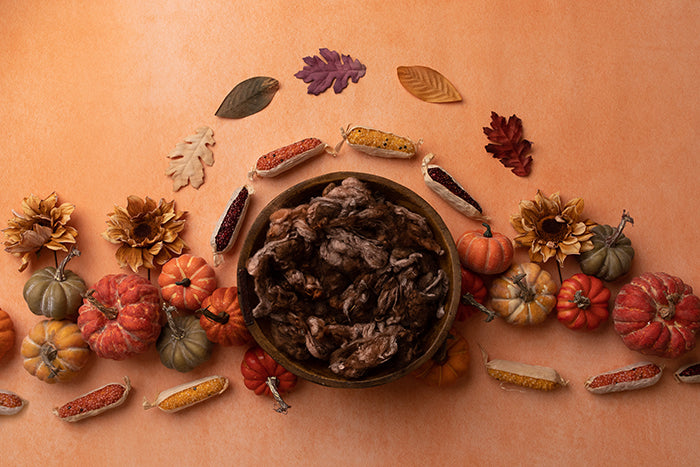 Autumn Harvest | Newborn Digital Backdrop - HSD Photography Backdrops