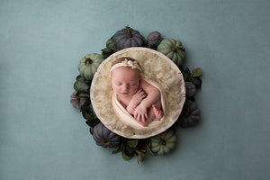Autumn is Here | Newborn Digital photography backdrop & background