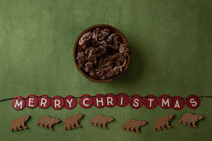 Beary Christmas | Deck the Halls Coll. | Digital photography backdrop & background