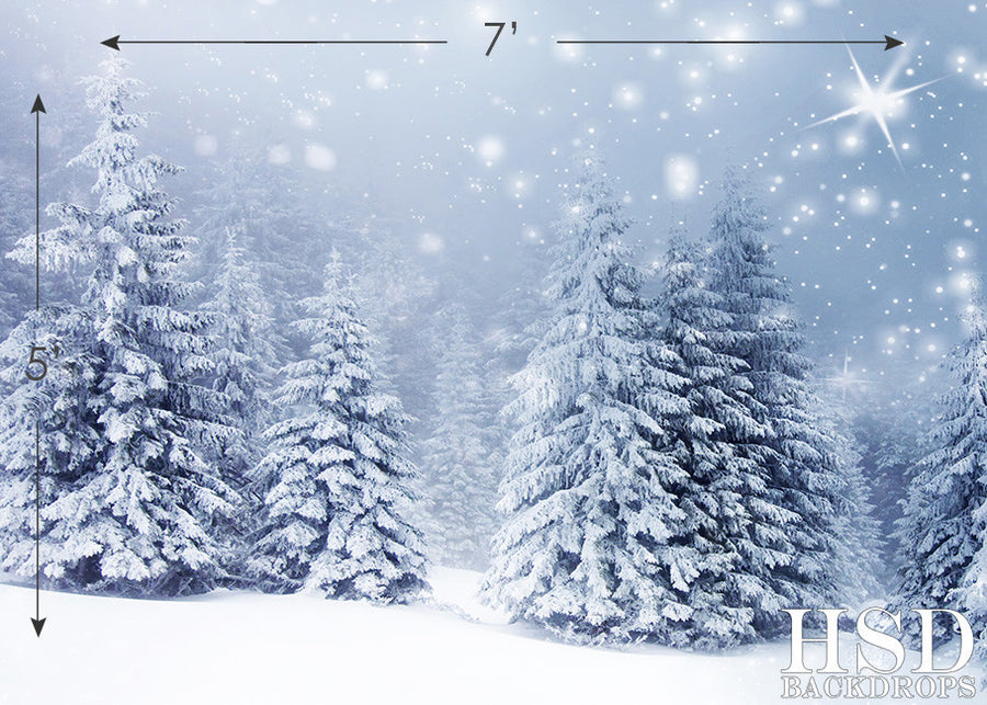 Winter Fir Trees photography backdrop & background